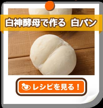 白神酵母で作る 白パン