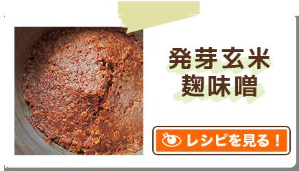 発芽玄米麹味噌