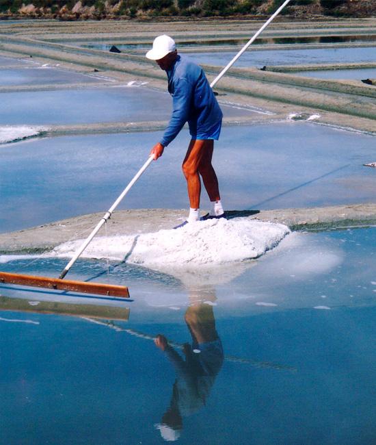 ゲランドの塩 あら塩 収穫風景