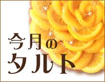 4月は柑橘チーズタルト♪