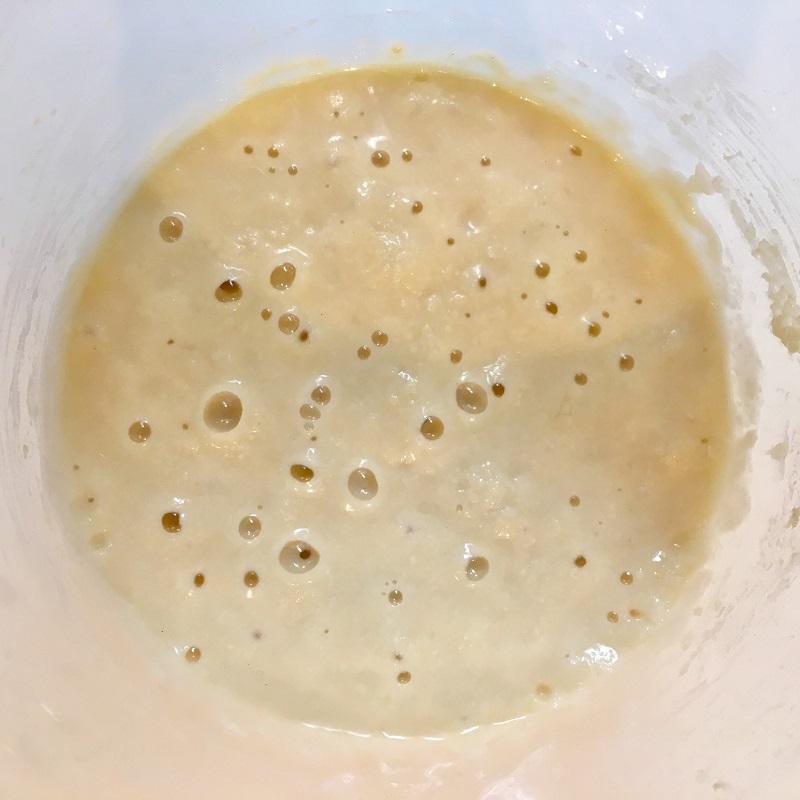 ホシノ天然酵母の生種起こし